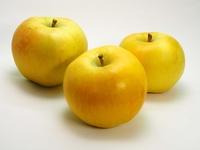 ム-ンフジ リンゴ