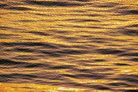 夕日に輝く海面