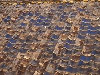 夕日の当たる瓦屋根