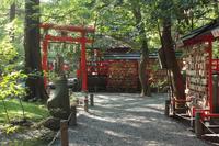 京都 野宮神社 境内