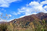 白川郷の紅葉風景