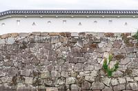 赤穂城の城壁
