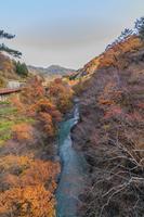 秋の猿橋から見た風景
