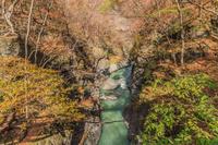 秋の鹿飛橋から見た風景