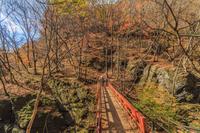 秋の吾妻渓谷遊歩道と鹿飛橋の風景