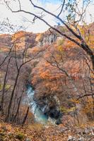 秋の吾妻渓谷遊歩道と遊歩道から見る風景