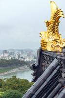 金の鯱鉾と岡山市の街並み