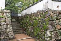 岡山城の風景