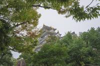 岡山城 雨の中の天守閣
