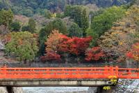 京都 宇治川の朱橋と紅葉