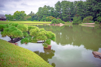岡山後楽園 沢の池の風景