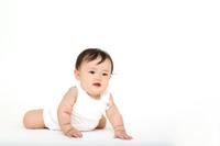 白バックでハイハイする1人の女の子の赤ちゃん。乳幼児、赤ちゃん、育児、0才、子育てイメージ