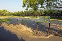 伊場遺跡公園