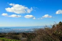 山中城跡から眺める駿河湾