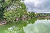 岡山城 内堀の風景
