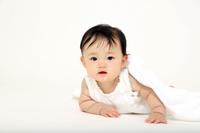 白バックでハイハイする1人の女の子の赤ちゃん。新生児、乳幼児、ハイハイ、育児、子育て、健康、成長イメージ