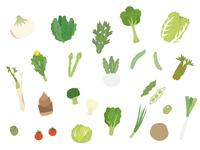 春の野菜1
