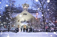 Snow's Sapporo clock tower