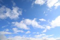 冬空、青空、大空