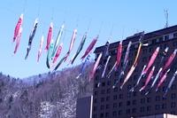 Carp streamers of Jozankei Onsen
