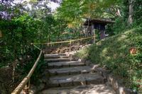椿山荘 庭園