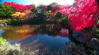 Late autumn Hiraoka Daichi Center