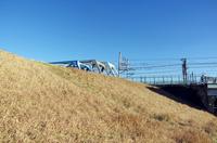 土手と鉄橋