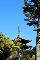興福寺の五重の塔