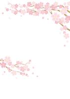 桜のある春の風景のイラスト(白背景)