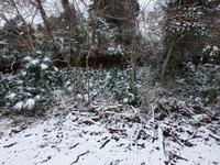 雪にい覆われた里山