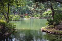 名勝縮景園の情景