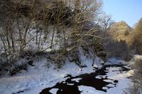 冬の葛丸川渓流