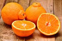 柑橘類 しらぬひ