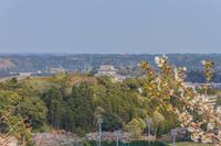 春の大多喜県民の森展望台から見た風景
