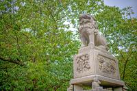 萩城跡 志都岐山神社 森の中の狛犬