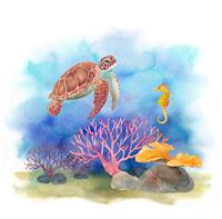 海の生き物-ウミガメとタツノオトシゴ、サンゴ礁