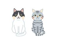 猫 セット