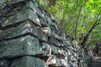 岩国城 森の中の石垣