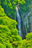 志賀高原 澗満滝