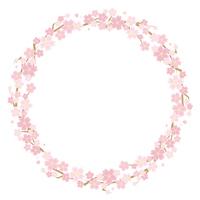 桜のサークルフレーム(白背景)