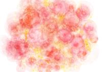 花束の模様