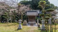 春の館山城跡の浅間神社の風景