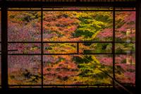 晩秋の瑠璃光院