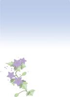 喪中ハガキの花のイラスト