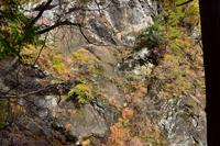 秋の大柳川渓谷