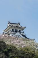 春の館山城の天守の風景