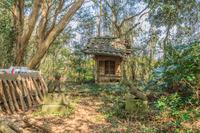 春の館山藩の陣屋跡の貴美稲荷神社の風景