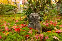 秋の圓光寺の地蔵