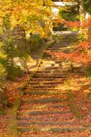 秋の龍穏寺