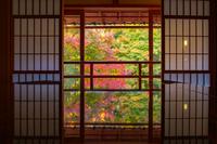 秋の旧竹林院